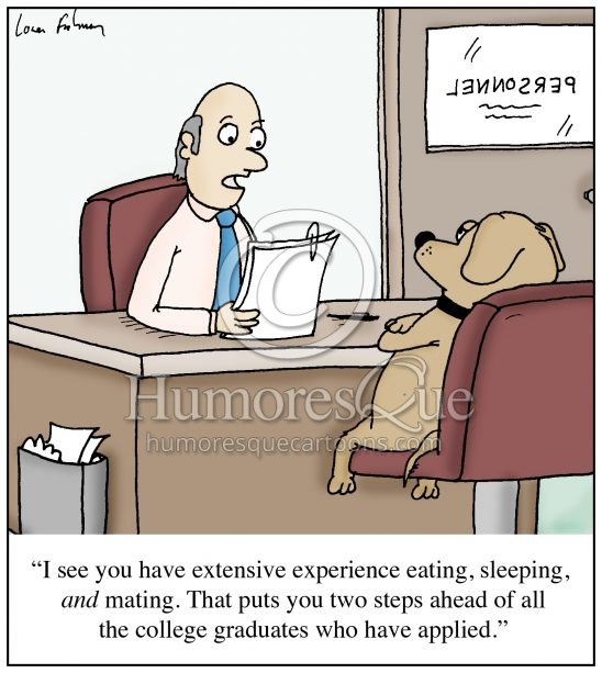 dog with experience eating sleeping and mating cartoon