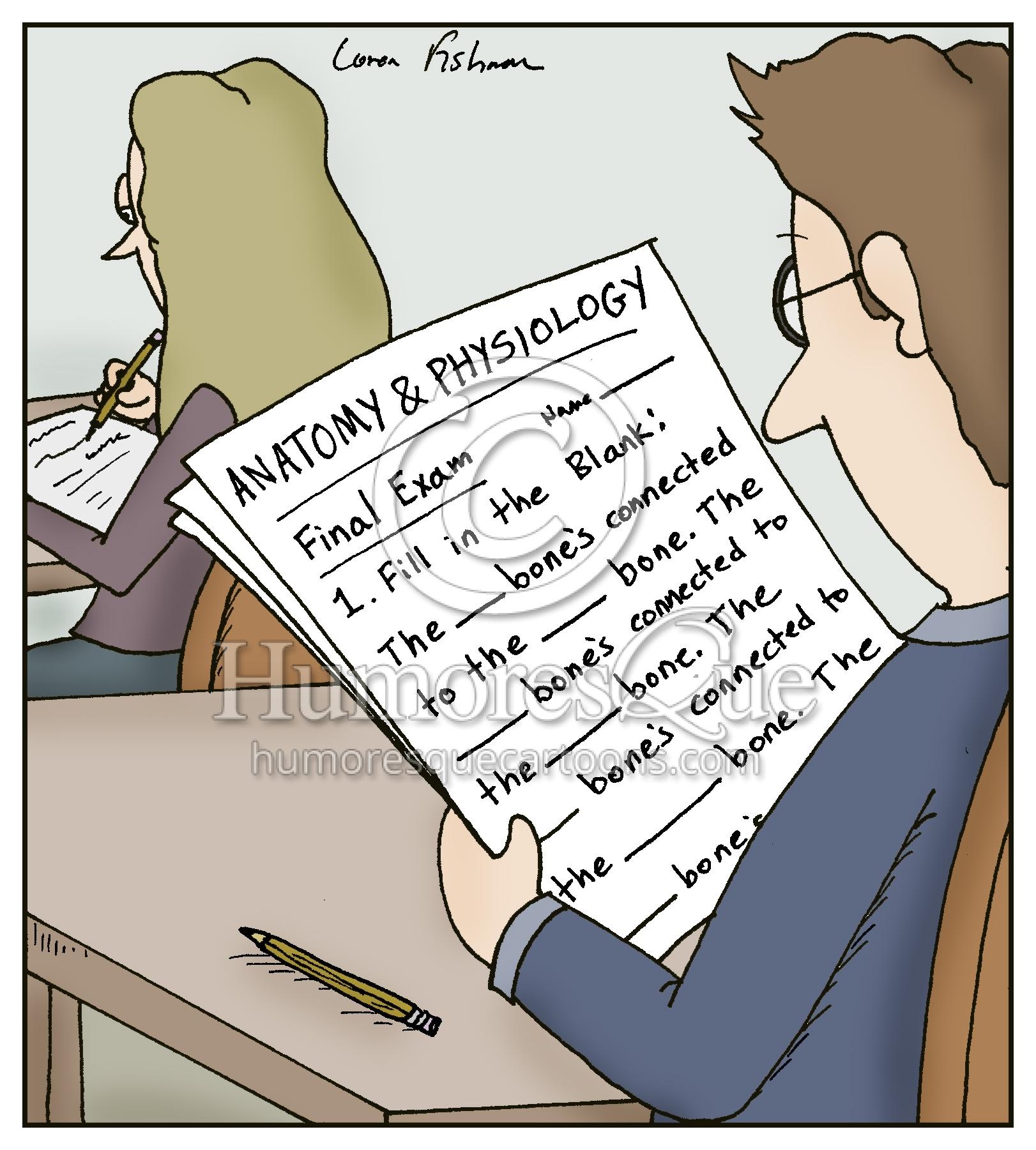anatomy physiology bone song test cartoon