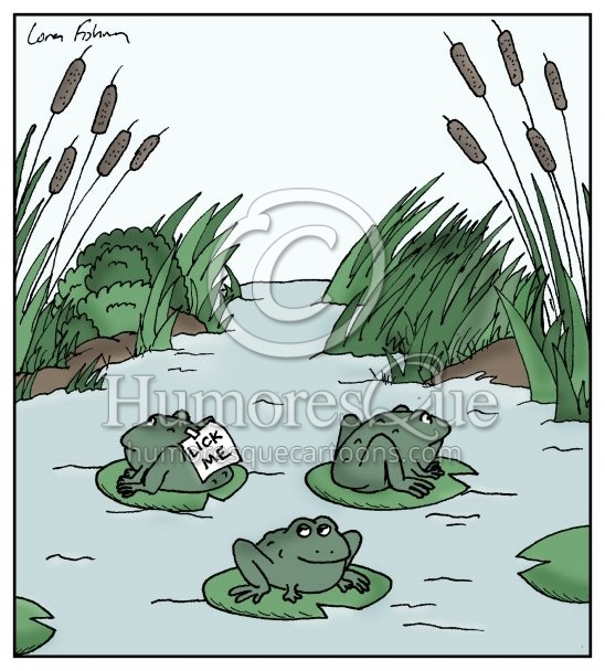 Frog or toad with a lick me sign on his back licking toads drug cartoon